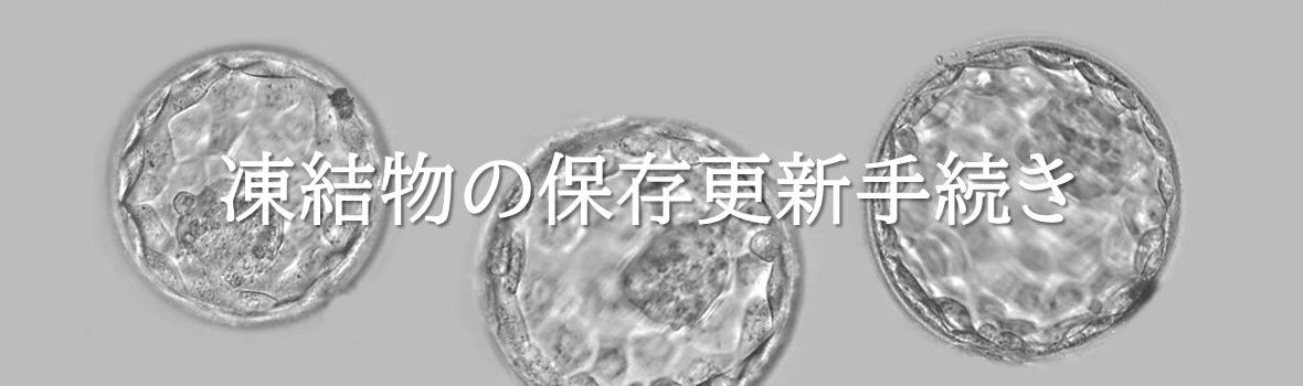 凍結物(胚盤胞、初期分割期胚、精子)の保存更新手続き