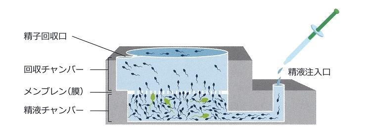 ZyMotの精子回収図